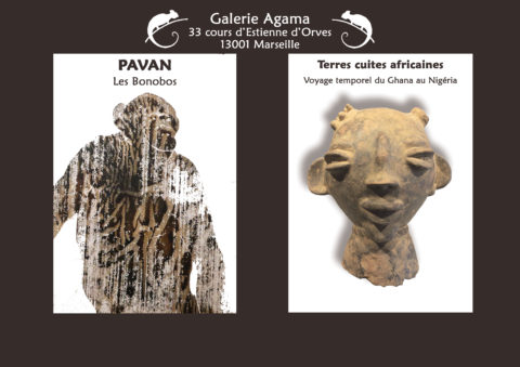 Exhibition Pavan and africans terracottas